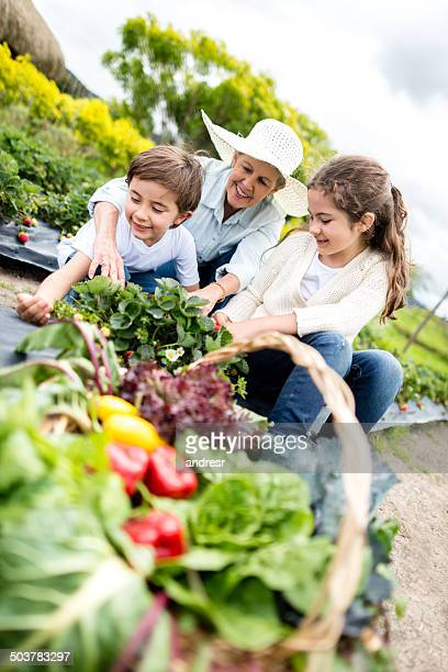 Grandma gardening with the kids