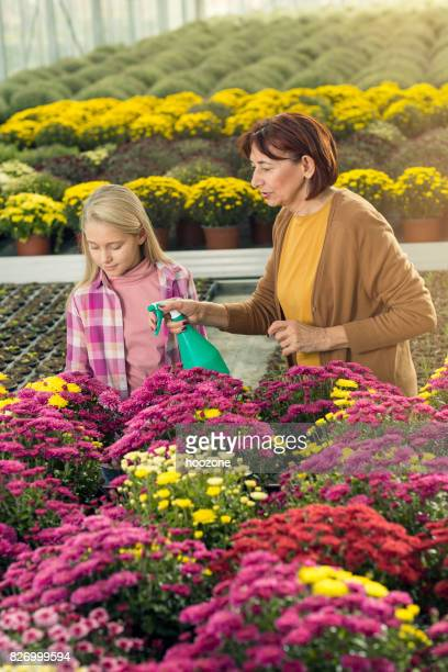 Grandmother and grand daughter working at greenhouse