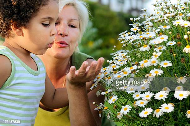 Grandmother and Granddaughter Blowing a Flower Away ( serie)