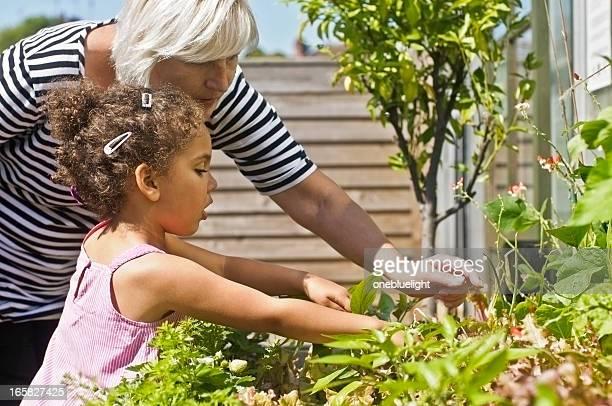Grandmother and Granddaughter Gardening