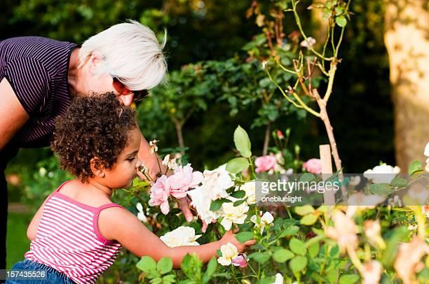 Nonna e Nipote femmina guardando i fiori (serie