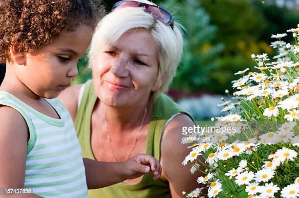 祖母と孫娘ことで花(シリーズ)