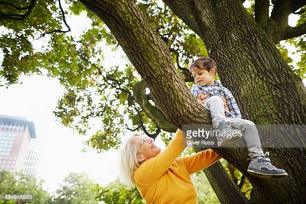 Grandmother playing with grandson in tree