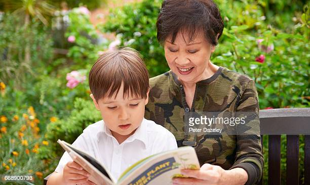 Grandmother teaching Grandson to read