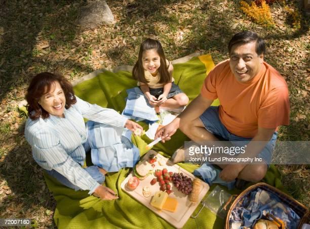 Grandparents and granddaughter having a picnic
