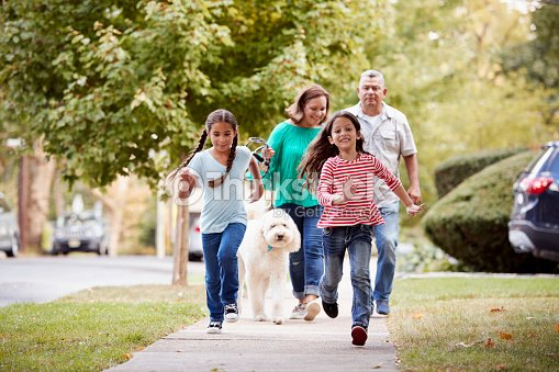 Grandparents And Granddaughters Walking Dog Along Street : Stock Photo