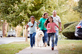 Grandparents And Granddaughters Walking Dog Along Street