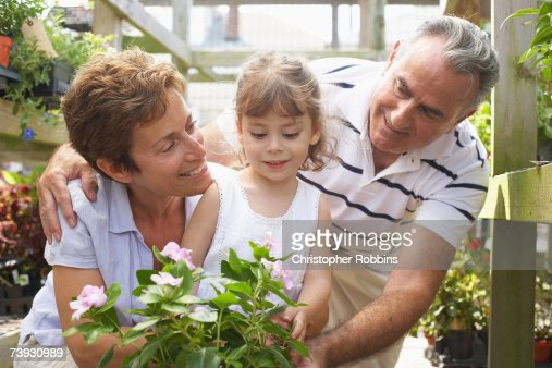 Grandparents with granddaughter (6-7) at garden centre : Stock Photo
