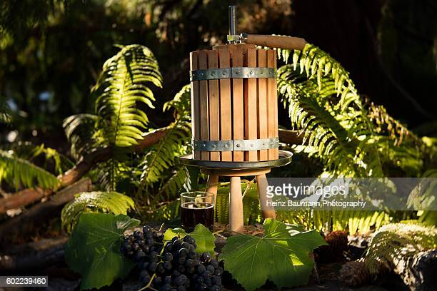 Grape press with glass on a granite slab in the evening sun