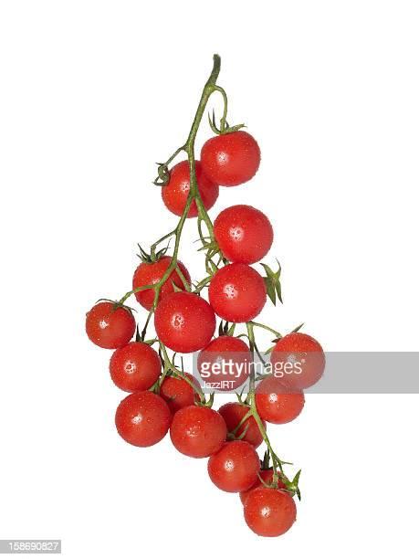 Tomate tipo uva