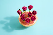 Minimalist and poetic composition of red roses growing in a grapefruit. Minimal color still life photography