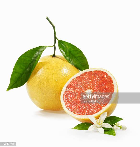 Grapefruit Whole and Half with Blossom