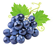 grapes isolated on the white backgroundgrapes isolated on the white backgroundgrapes isolated on the white backgroundgrapes isolated on the white backgroundgrapes Isolated on the white backgroundgrape