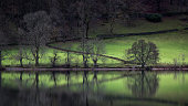 Grasmere Reflected 2