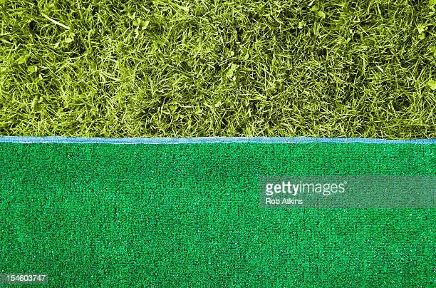 Grass and artificial grass