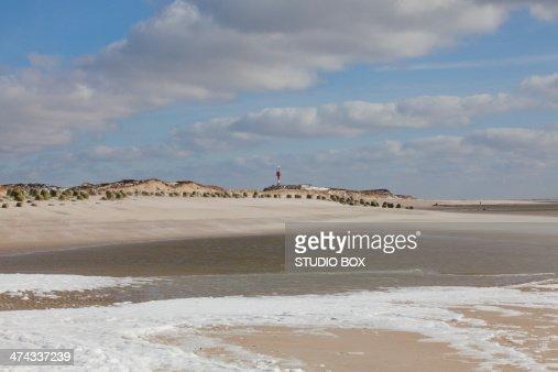 Grass and sand dunes, seaboard near List