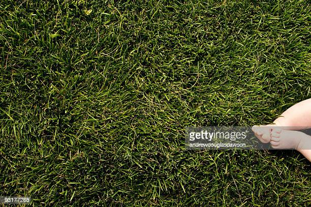 Grass background with baby feet