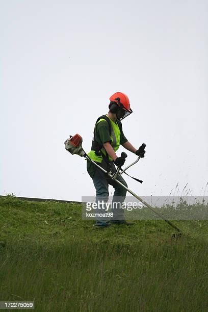 Grass Cutter, Series - 2