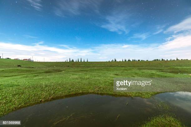 grass field with water pond inside it at night with moon light