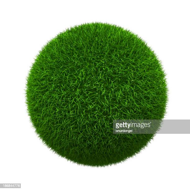 Grass formed into a sphere and isolated on white