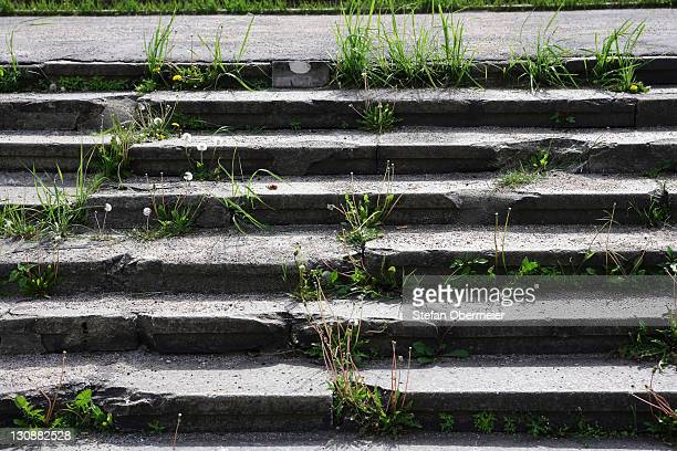 Grass growing on stone stairs
