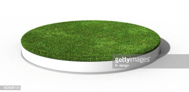 """Gras """"Podium"""""""