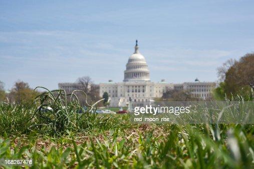 Grass root politics