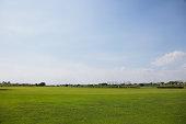 Grassland and sky