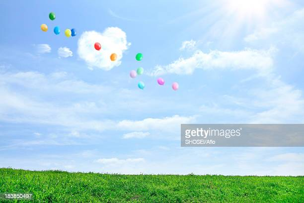 Grassland and sky with flying balloons