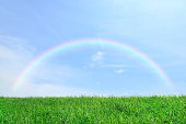 Grassland and sky with rainbow