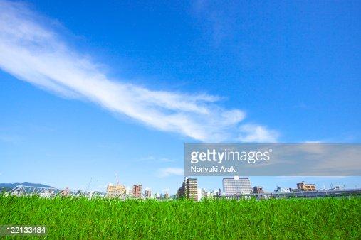Grassland and town : Stockfoto