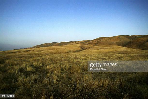 Grassland hills are seen near the Wind Wolves Preserve on August 3 2004 north of the Los Padres National Forest California The Bush administration is...