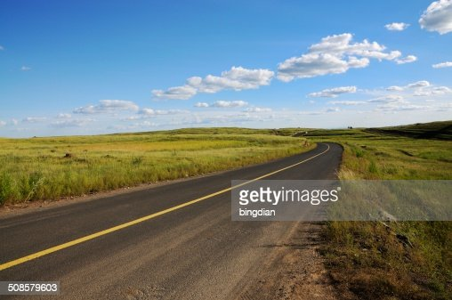 Grassland on the road : Stock Photo