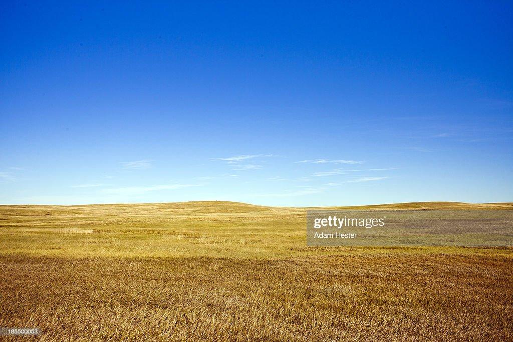 Grasslands and Prairie in South Dakota.