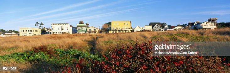 Grassy Field, Mendocino, California : Stock Photo