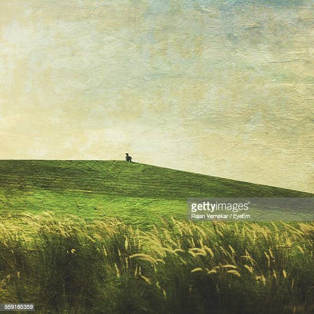 Grassy Field Painted On Wall