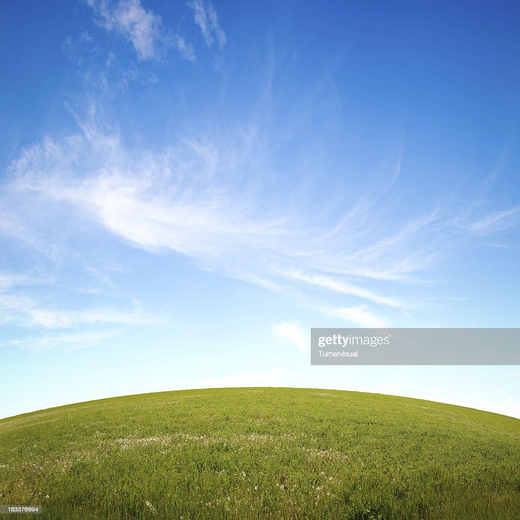 Grassy Hill & Sky