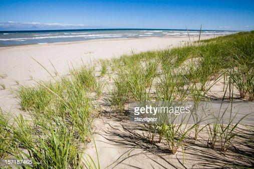芝生の砂丘やミシガン湖