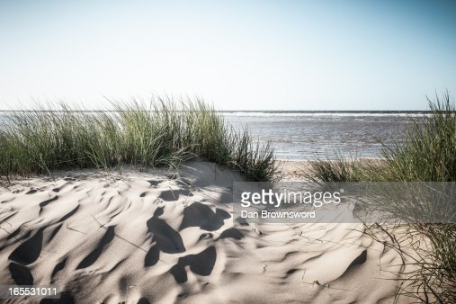 Grassy sand dunes on beach : Stock Photo