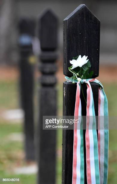 A grave is decorated with a white marguerite and a ribbon with the Hungarian colours at the Koztemeto cemetery for the victims of the 1956 uprising...