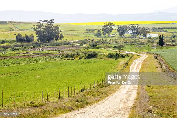 A gravel farm road bordered by a fence leads through the farm toward a distant dam and canola field, Swellendam, Western Cape Province, South Africa