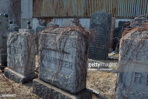 mount zion single jewish girls One of the most-visited graves in the catholic cemetery on the southern slope of mount zion in  september jews killed in a single  jewish girls hidden .