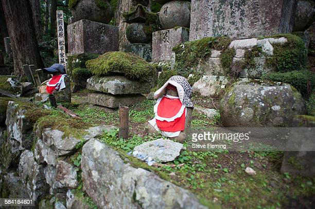 Graveyard offerings, Koyasan, Japan.