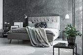 Contemporary master bedroom with scandinavian gray decor, plant, handmade pillow