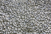Gray pebbles landscape Rocks