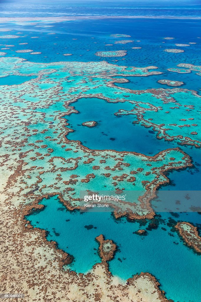 Aerial view of coral, heart reef, and the turquoise waters at Hardy Reef. Great Barrier Reef Marine Park, Whitsundays, Queensland, Australia