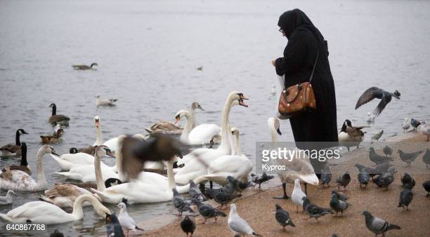 UK, Great Britain, England, London, Hyde Park, Serpentine Lake, View Of Muslim Woman Feeding Swans Wearing Burqa