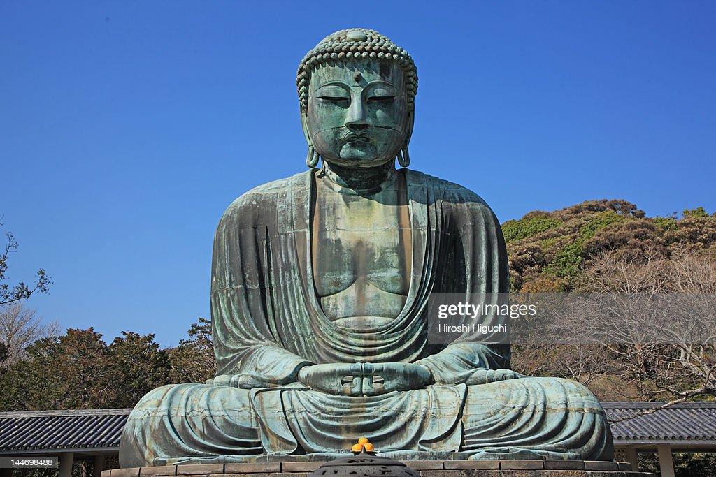 Great Buddha of Kamakura : Stock Photo