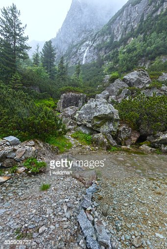 Great Cold Valley summer view (High Tatras, Slovakia). : Stock Photo