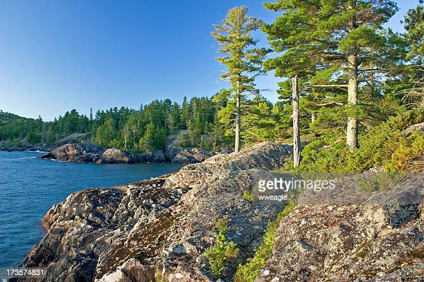 Great Lakes Coastal Landscape